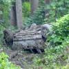 Rice Man Killed in Crash on 307
