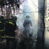 Wildfires Abound in Windy Conditions