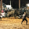 A Whole Lotta Bull: Locals 'Cowboy Up' in Chase City Buck'Em Series
