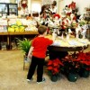 Shop Small Big Success
