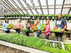 R-H Greenhouse Spring Plant Sale 2017